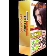 Хна натуральная для волос Дэй 2 Дэй  4 в 1 (хна,амла, шикакай,мыльный орех ) 100гр.