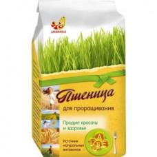 Пшеница для проращивания, 500гр, Дивинка